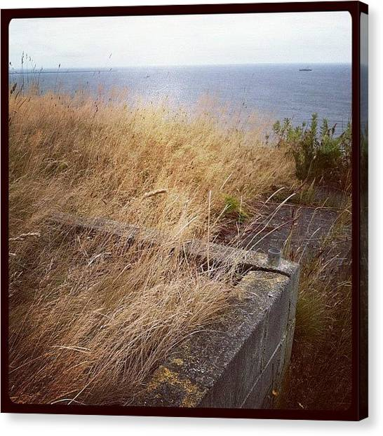 Seagrass Canvas Print - Grass Overtaking The Ruins Of The Past by Emily Lee