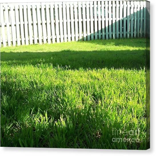 Grass Shadows Canvas Print