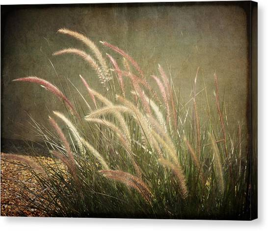 Grasses In Beauty Canvas Print