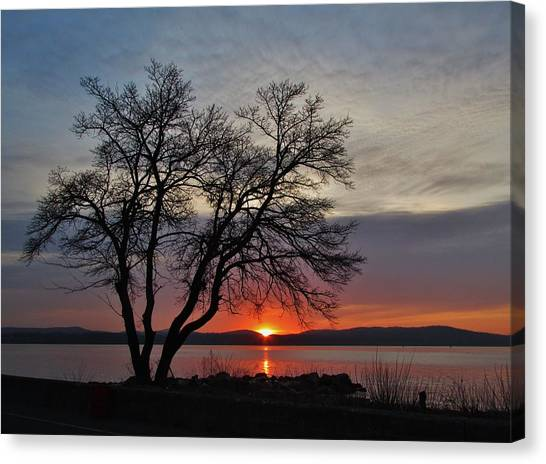 Grassy Point Sunrise Canvas Print by Thomas  McGuire