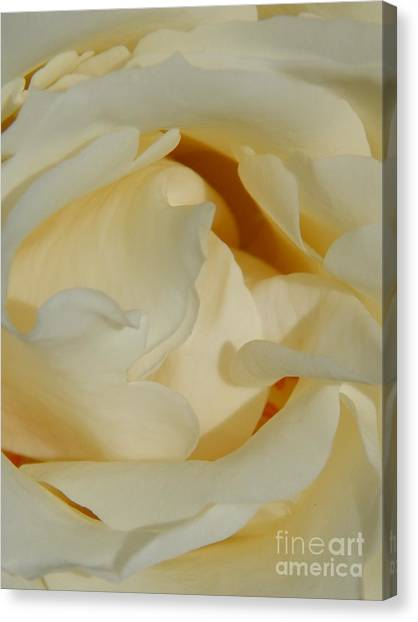 Grave Beauty Canvas Print