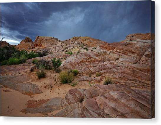 Valley Of Fire Canvas Print - Gray And Red In The Valley Of Fire by Rick Berk