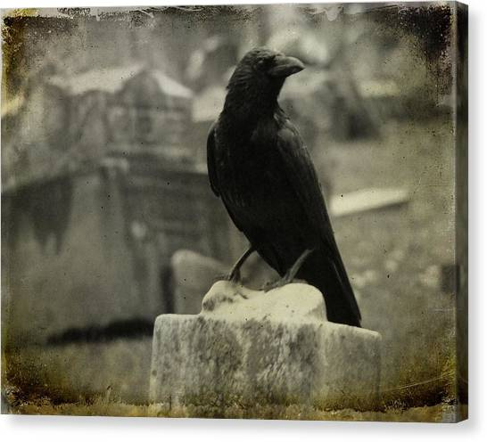 Ravens In Graveyard Canvas Print - Gray Rainy Day Raven In Graveyard by Gothicrow Images