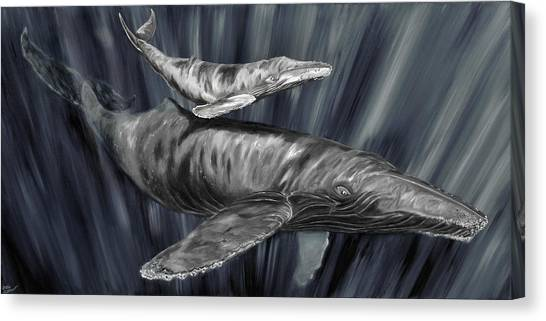 Gray Whales Canvas Print
