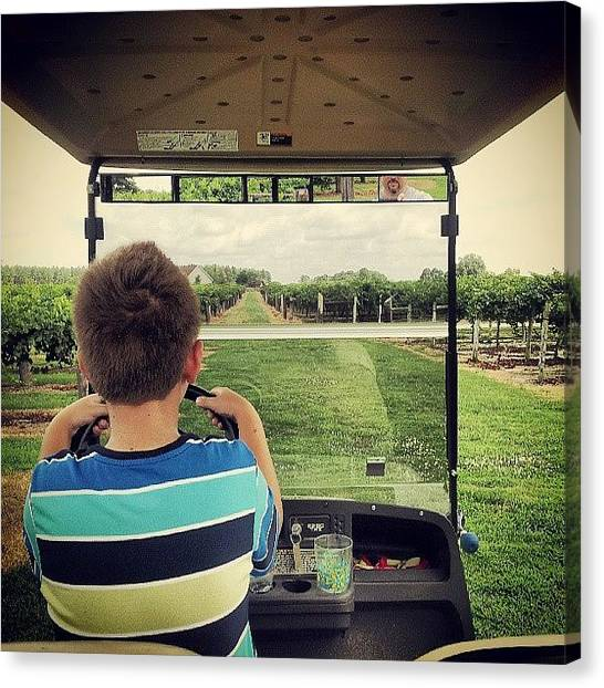Vineyard Canvas Print - Grayson Giving Me A Ride Through The by Chris Morgan