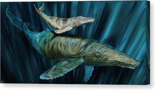 Graywhale Momma And Calf Canvas Print