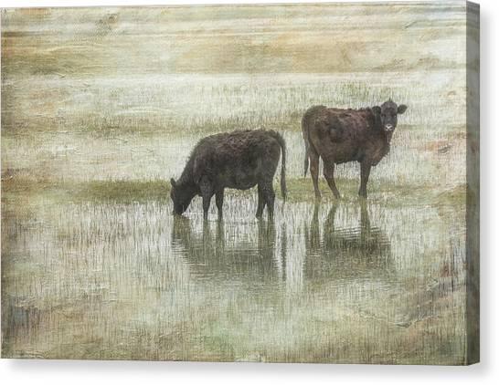 Grazin In The Pond Canvas Print by Ramona Murdock