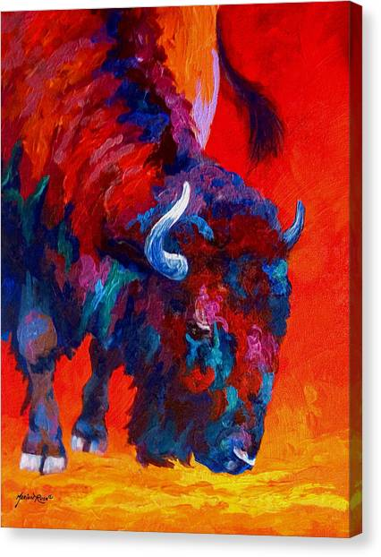 Grazing Canvas Print - Grazing Bison by Marion Rose