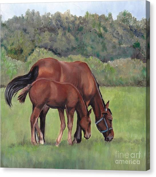 Grazing Canvas Print by Charlotte Yealey