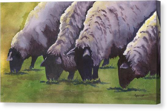 Sheep Canvas Print - Grazing by Marsha Elliott