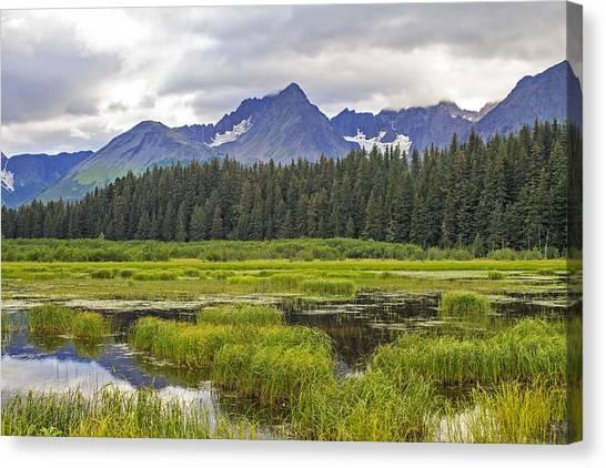 Great Alaskan Outdoors Canvas Print