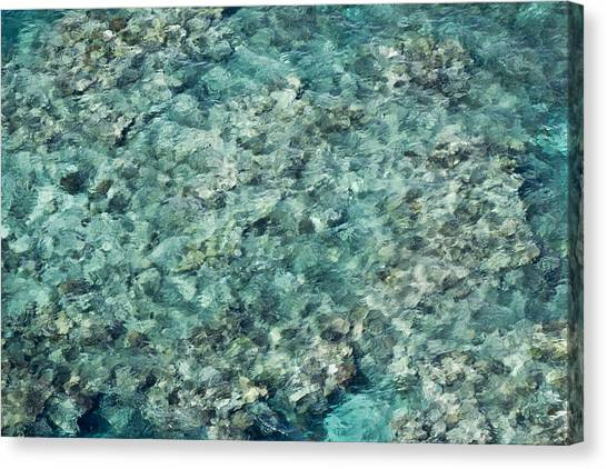Great Barrier Reef Texture Canvas Print