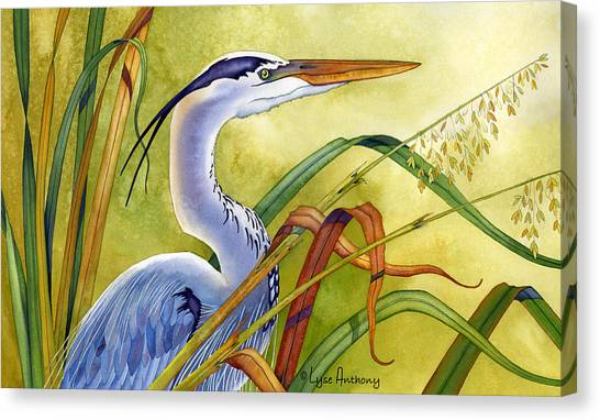 Egrets Canvas Print - Great Blue Heron by Lyse Anthony