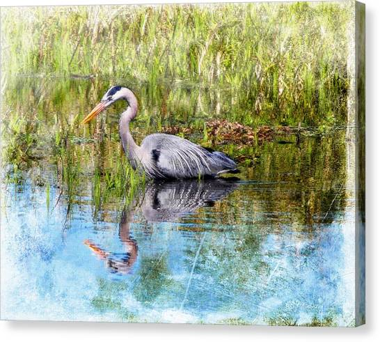 Great Blue Hunter Canvas Print