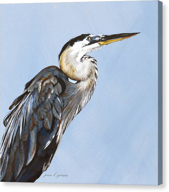 Great Blue I Canvas Print