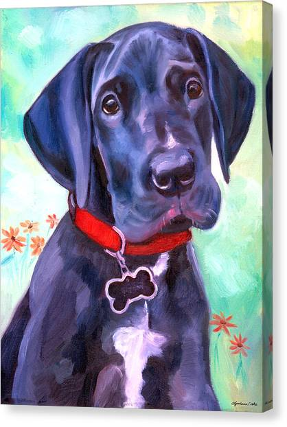 Great Danes Canvas Print - Great Dane Puppy Sweetness by Lyn Cook
