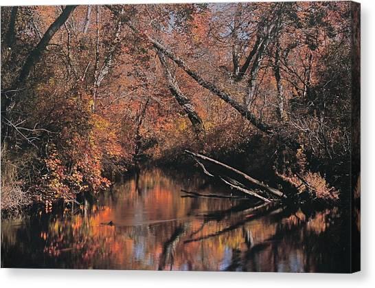 Great Egg Harbor River Canvas Print