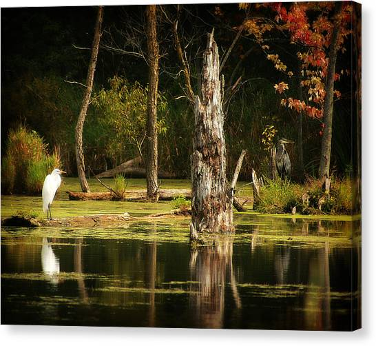 Great Egret And Great Blue Heron Canvas Print by Scott Hovind