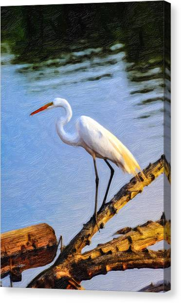 Great Egret Fishing Oil Painting Canvas Print