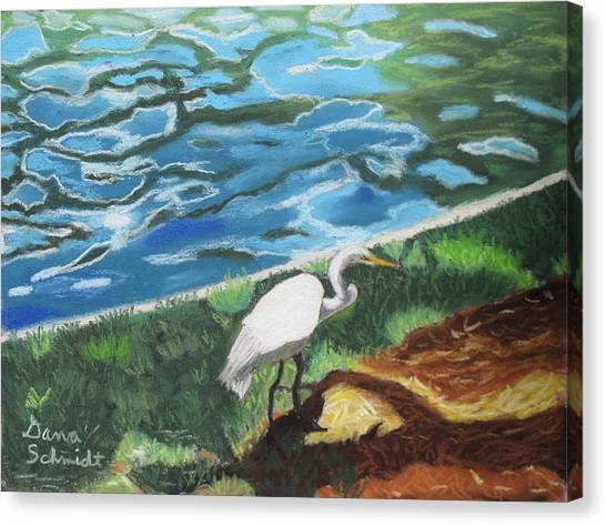 Great Egret In Florida Canvas Print