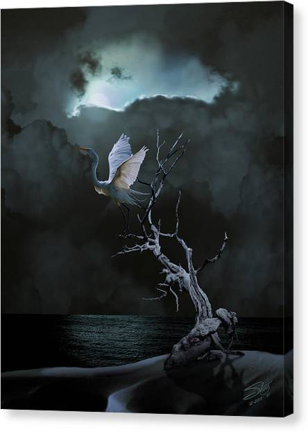Great Egret Under Full Moon Canvas Print