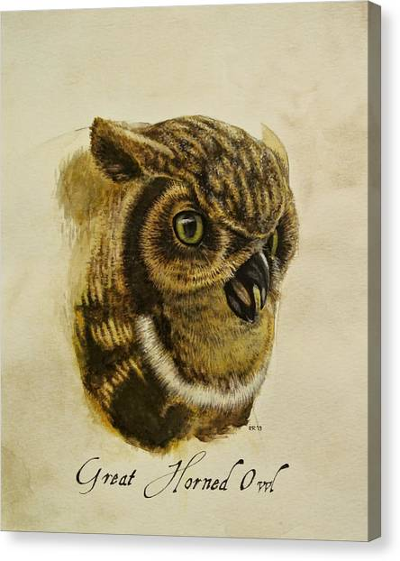 Great Horned Owl Canvas Print by Rachel Root