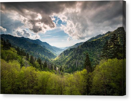 Tn Canvas Print - Great Smoky Mountains Landscape Photography - Spring At Mortons Overlook by Dave Allen