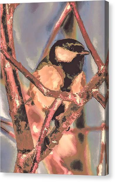 Great Tit  A  Leif Sohlman Canvas Print