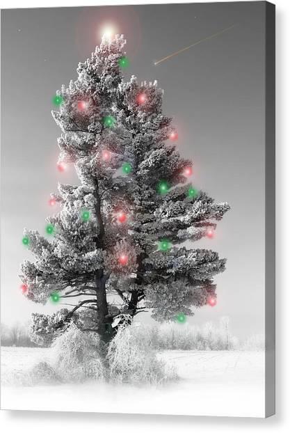 Great White Christmas Pine Canvas Print