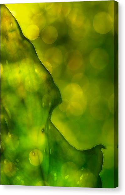 Green Abstract Canvas Print