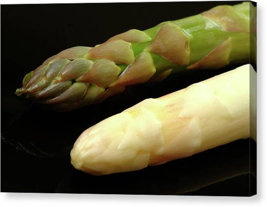 Asparagus Canvas Print - Green And White Asparagus by Bildagentur-online/th Foto/science Photo Library