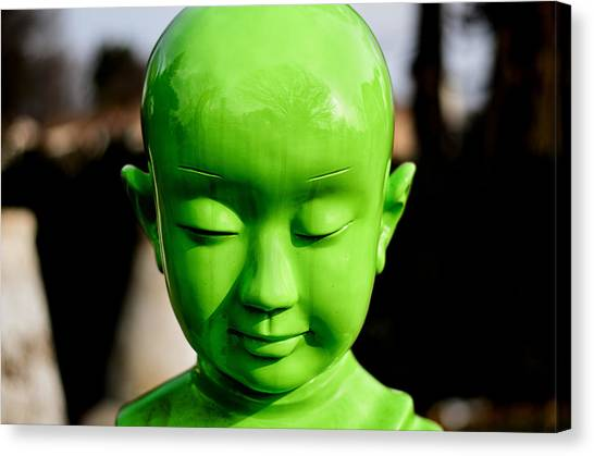 Canvas Print featuring the photograph Green Buddha by Steve Stanger