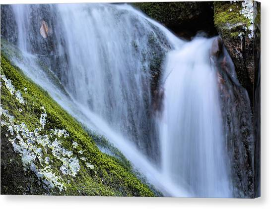 Green Diamonds  Canvas Print by JC Findley