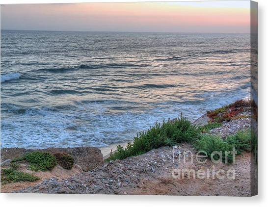 Green Dog Beach Coastline Canvas Print by Deborah Smolinske