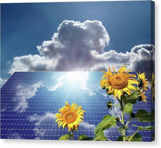 Solar Farms Canvas Print - Green Energy by Detlev Van Ravenswaay