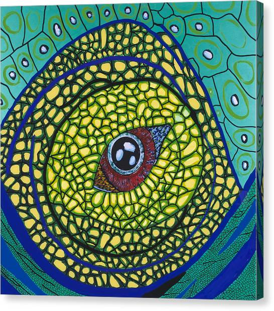Green Eye Canvas Print by Patrick OLeary