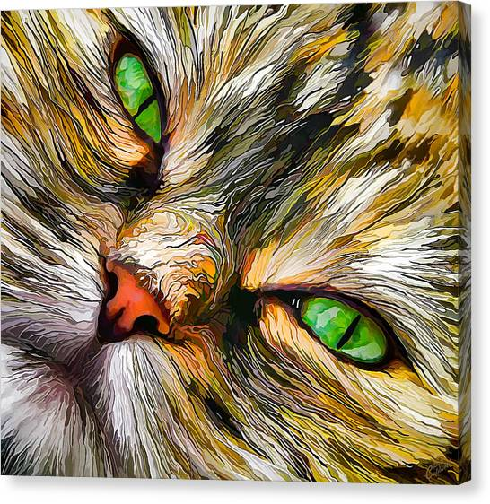 Green-eyed Tortie Canvas Print