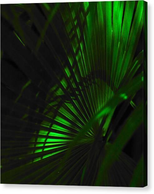 Green Fan Canvas Print