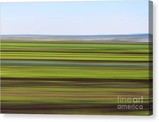 Green Field Abstract Canvas Print