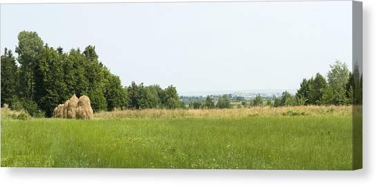 Green Field Panorama Canvas Print