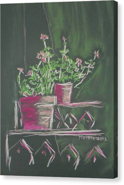 Green Geraniums Canvas Print by Marcia Meade