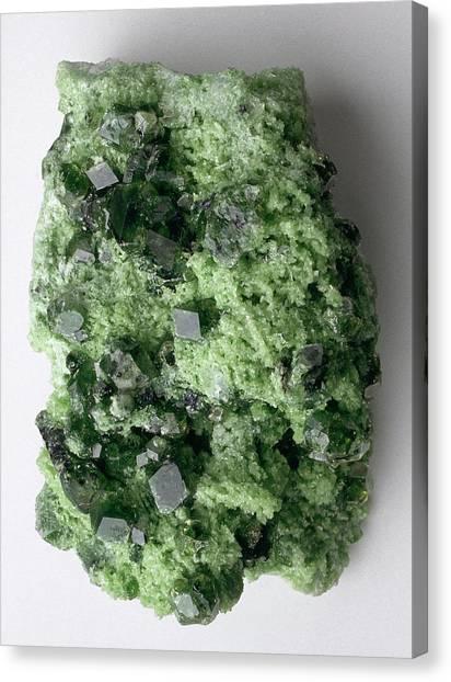 Gemstones Canvas Print - Green Grossular (garnet) In Matrix by Dorling Kindersley/uig