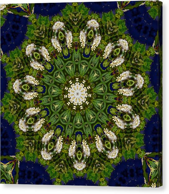 Green Leaf White Flower Mandala Canvas Print