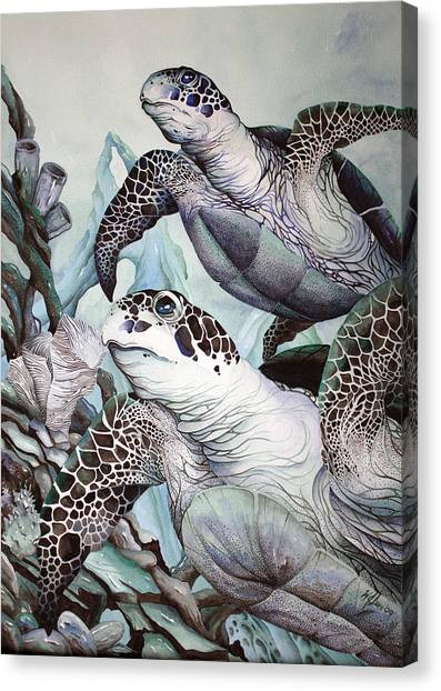 Green Loggerhead Canvas Print