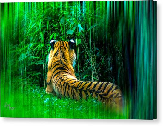 Green Meditation Canvas Print
