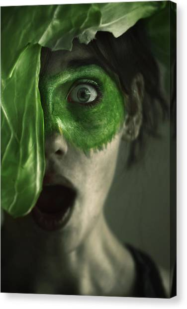 Cabbage Canvas Print - Green by Mohammed Baqer