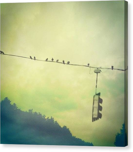 Jerseys Canvas Print - Green Mountain Dream #trafficlight by Red Jersey