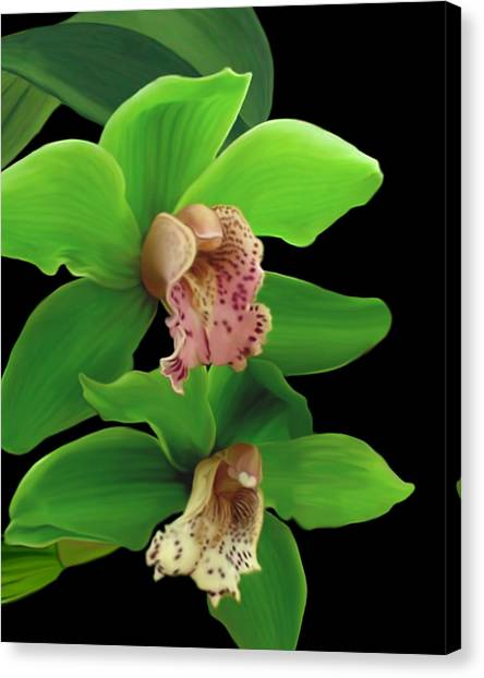 Green Orchids Canvas Print