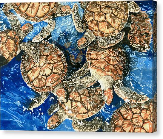 Green Sea Turtles Canvas Print