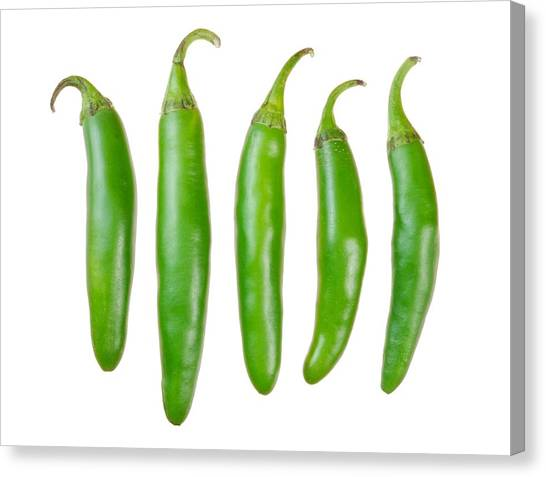 Hot Sauce Canvas Print - Green Serrano Peppers by Jim Hughes